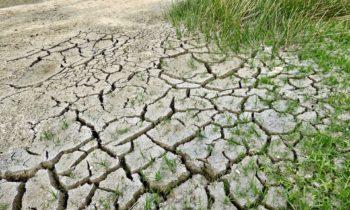 Dialogue interparlementaire climat : Ecolo et Groen saluent une étape importante et appellent à poursuivre une trajectoire ambitieuse
